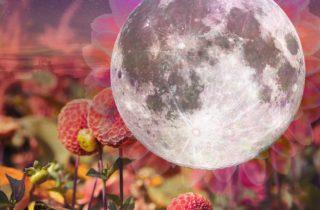 The Full Moon In Aquarius Of August 22, 2021